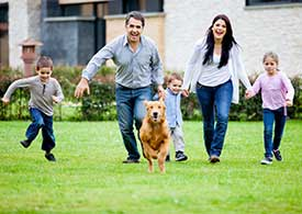 Pet Allergy Treatment in Riverdale, NJ